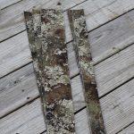 Treestand Kit (Strata)